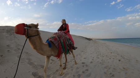 vnitrozemí : Inland sea is a major tourist destination for Qatar. Freedom woman riding camel on beach at Khor al Udaid in Persian Gulf. Caucasian blonde tourist enjoys camel ride in Middle East, Arabian Peninsula.