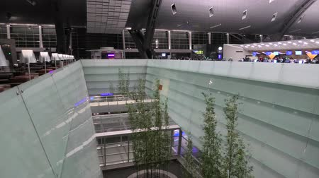 abriu : Doha, Qatar - February 24, 2019: interior garden of Hamad International Airport or Doha Hamad Airport, the only airport in Qatar open to civilian traffic, opened in 2014.