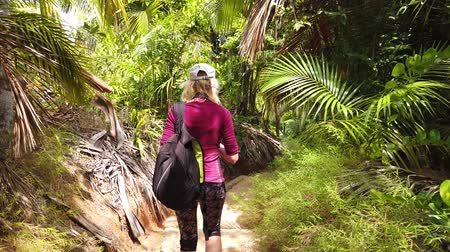 anse : third person view of tourist woman trekking Coco de Mer palm trees botanical garden. Fond Ferdinand Nature Reserve, near Anse Marie-Louise, Praslin, Seychelles. Lodoicea Maldivica nut or Sea coconut.