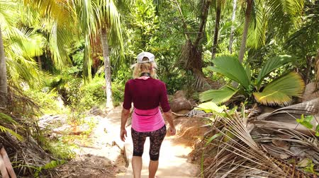 anse : Girl trekking at Coco de Mer palm trees botanical garden. Fond Ferdinand Nature Reserve, near Anse Marie-Louise, Praslin, Seychelles. Lodoicea Maldivica nut or Sea coconut forest. Third person view.