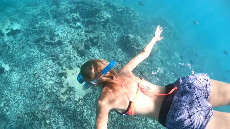 apnee : woman swims underwater of Cocos Island, Seychelles. Girl with fishes in the Indian Ocean. Tropical destination holiday and travel lifestyle with watersport activity. Vidéos Libres De Droits