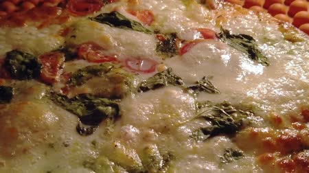 calabresa : SLOW MOTION: Round pizza with mozzarella cheese, tomato sauce and basil leaves, cooking in the oven. Close up panorama view of boiling pizza sauce by Italian recipe.