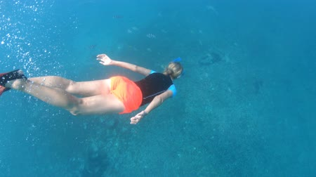marine park : Third person view of girl snorkeling underwater with fishes at Felicite Island. Split view of woman exploring sea life of Indian Ocean, under and above water. Coral reef landscape of Seychelles.