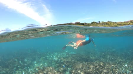 la digue island : Split view of female apnea underwater and paradisiacal landscape of Felicite Island with tropical Seychelles fish. Snorkeling woman exploring sealife of Indian Ocean, under and above water photography