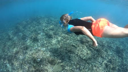 la digue island : Split view of snorkel woman underwater Felicite Island, Seychelles. Female in apnea sealife under and above Indian Ocean. Tropical destination holiday concept. Travel lifestyle watersport activity.