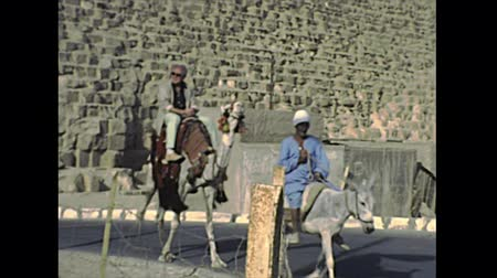esfinge : CAIRO, EGYPT, AFRICA - circa 1982: touristic camel riding with cameleer at the Great Giza Pyramid in Valley Temple of Menkaure in Cairo. Historical archival of Cairo capital city of Egypt in 1980s Stock Footage