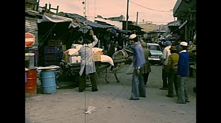 szamár : GAZA, PALESTINE, ISRAEL - CIRCA 1979: Streets life working in the old Gaza market with donkey chariot. Archival of Israel and Palestine in 1970s Stock mozgókép