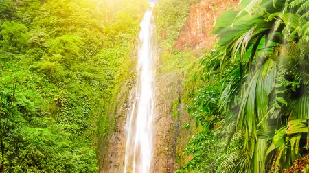 grande : Carbet Falls or Les Chutes du Carbet at sunset, one of three waterfalls in tropical rainforest on Carbet River, Guadeloupe island, French Caribbean. The falls are one of the most popular visitor sites