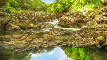tamarin : Beautiful sky reflected in the calm waters of Black River Gorges National Park, the largest protected forest of Mauritius, Indian Ocean, Africa. Scenic landscape Cinemagraph loop background.