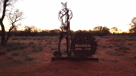 molas : Alice Springs, Northern Territory, Australia - Aug 29, 2019: commemorative sculpture of Roger 2006-2018, huge red kangaroo bodybuilder star of a TV series on The Kangaroo Sanctuary and become a star. Stock Footage