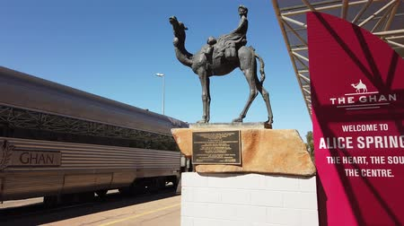 afghan : Alice Springs, Northern Territory, Australia - Aug 29, 2019: The Ghan Memorial: statue of Afghan worker and camel and arrival of legendary train The Ghan in Alice Springs Train Station. Stock Footage