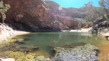 west macdonnell national park : Scenic landscape of Ormiston Gorge Water Hole with ghost gum in West MacDonnell Ranges, Northern Territory, Australia. Ormiston Gorge is a great place to swim or see the high walls of gorge and pound.