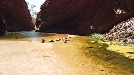 australian landscape : Ellery Creek Big Hole, a waterhole in a gorge surrounded by high red cliffs, is one of most popular camping, walking, swimming spots in West MacDonnell National Park, Northern Territory, Australia.