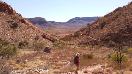 west macdonnell national park : POV following of active tourist woman in Larapinta Trail, Ormiston Pound Walk overlooking Mount Sonder and Gosses Bluff crater. Tourism in Northern Territory, Central Australia, West MacDonnell Ranges Stock Footage