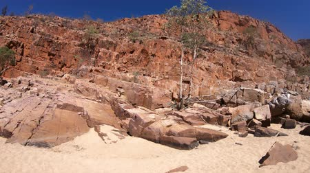 west macdonnell national park : Golden sand into the dry creek bed with high cliffs along Ormiston Pound walk, a popular circular walk in West MacDonnell Ranges National Park. Northern Territory, Central Australia Outback.