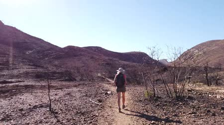 west macdonnell national park : HYPER LAPSE: woman walking by Mount Sonder, one of highest mountains in Northern Territory, Australia Outback. Vastness of Ormiston Gorge during hiking Ormiston Pound Walk in West MacDonnell Ranges.