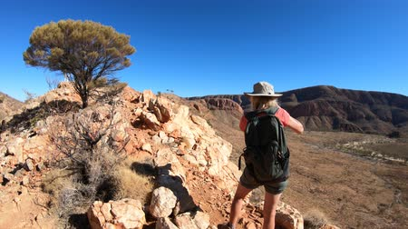 west macdonnell national park : Woman photographer enjoying Mount Sonder and Gosses Bluff crater at halfway point in Larapinta Trail, Ormiston Pound Walk. Northern Territory, Australia in West MacDonnell Ranges a popular destination
