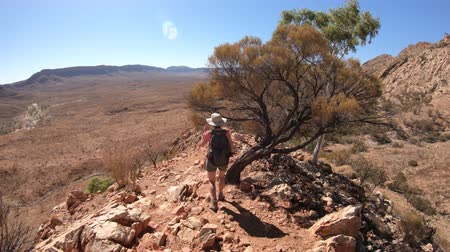 west macdonnell national park : third person view of woman trekking at Ormiston Pound Walk in West MacDonnell Ranges. Mount Sonder lookout, one of highest mountains in Northern Territory, Australia Outback. Stock Footage