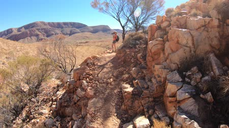 west macdonnell national park : third person view POV: woman walking in Northern Territory, Australia Outback. Vastness of Ormiston Gorge during hiking Ormiston Pound Walk in West MacDonnell Ranges. Stock Footage