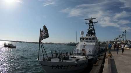 matança : San Diego, California, UNITED STATES - August 1, 2018: cutter of the Sea Shepherd Conservation Society, against whaling and illegal fisheries activities. Farley Mowat ship in San Diego Navy Pier. Stock Footage