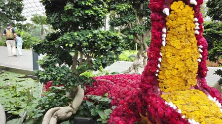 singapur : Singapore - Aug 8, 2019: Red Crocodile Flower Sculpture, Topiary Walk at Canopy Park. Jewel Changi Airport is nature-themed with gardens, attractions, hotel, retail and restaurants, opened in 2019. Stok Video