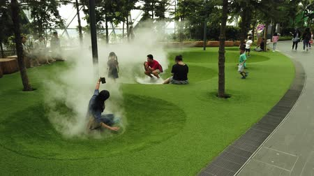особенности : Singapore - Aug 8, 2019: funny kids at Foggy Bowls, a simple playground features bowl-shaped platforms with artificial lawn which release mists in Canopy Park at Jewel Changi Airport Singapore.