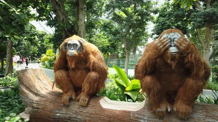 orchidea : Singapore - Aug 8, 2019: Two orangutans Sculpture, Topiary Walk at Canopy Park. Jewel Changi Airport is nature-themed with gardens, attractions, a hotel, retail and restaurants, opened in 2019. Stock mozgókép