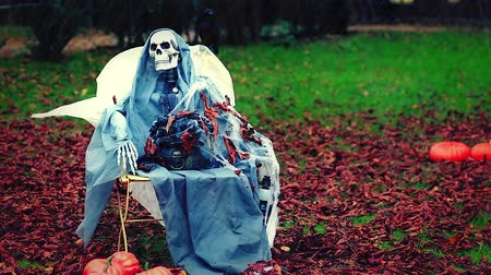 corvo : Skeleton Sitting on a Chair in the Rain, Fall Leaves on the Ground. Halloween Background - HD Video