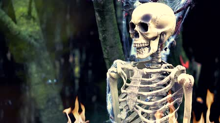 crânio : Human Skeleton on Fire in the Forest. Halloween Background - HD Video