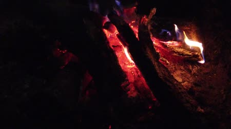 vonk : close up bonfire flames of camping fire, Super slow motion burning firewood