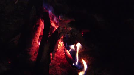 fireside : close up bonfire flames of camping fire, Super slow motion burning firewood