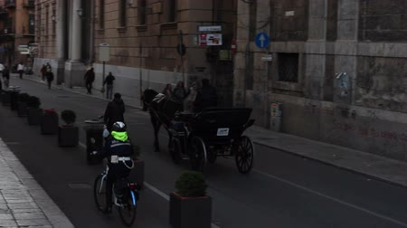 charakteristický : PALERMO, ITALY -DECEMBER, 20: Typical Horse-drawn Buggy on December 20, 2016