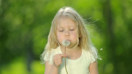 dmuchawiec : Little curly girl blowing dandelion.