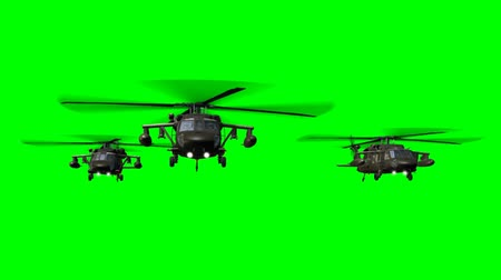 copter : Black Hawk Helicopter fly in Formation - seperated on green screen