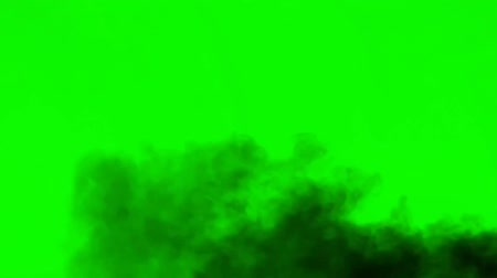 tenso : Smoke Dust - seperated on green screen .