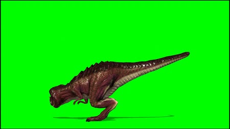 meteorite : Dinosaur Tyrannosaurus T-Rex dies and falls to the floor - green screen