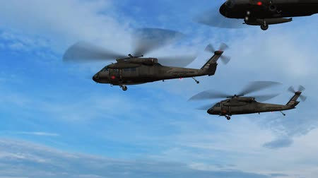 donanma : Black Hawk Helicopter fly over Stok Video