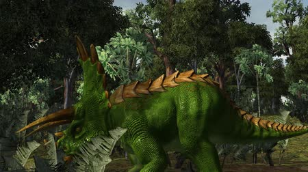 triceratops : Triceratops dinosaur in a prehistoric scene - dolly shot Stock Footage