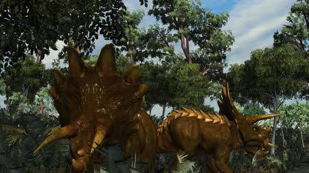 dinozaury : Triceratops dinosaur in a prehistoric scene - dolly shot Wideo