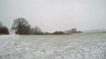 falling Snow on  agricultural fields in germany