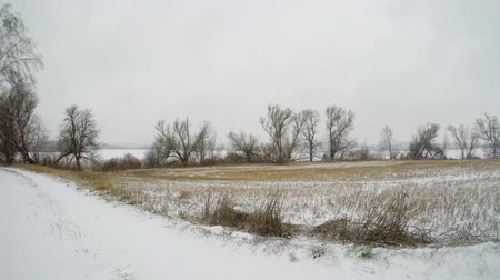falling Snow on a country road with trees and agricultural fields in germany