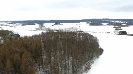 aerial view fly over winter forrest landscape in germany - dronen flight Stock Footage