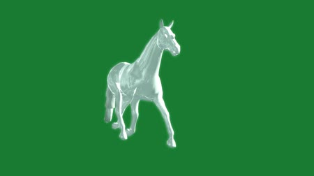 domestic animals : glass horse in the gallop animation - green screen Stock Footage