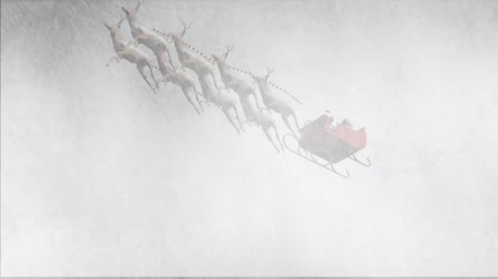 vetor : santa claus with animated reindeers  in snowstorm