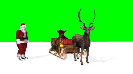 santa : Christmas animation - Santa, Reindeer, Sleigh, snow floor - green screen