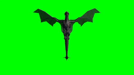 yaslanmak : mountain dragon flying   - green screen