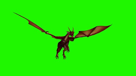 yaslanmak : dragon fly past - 2 different views  - green screen Stok Video