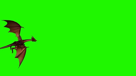 yaslanmak : dragon fly past - 3 different views - green screen Stok Video