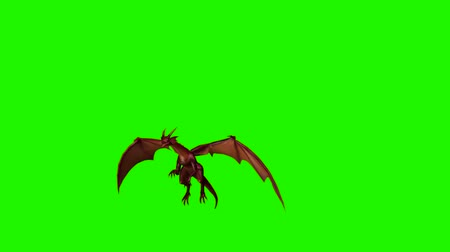 yaslanmak : dragon fly past  - green screen