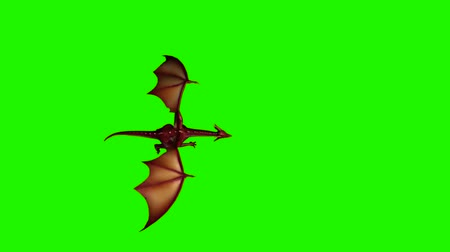 yaslanmak : dragon fly past - green screen Stok Video